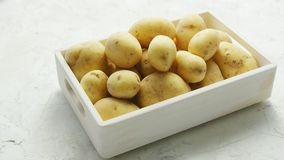 Box of clean and washed potatoes. White container filled with clean fresh potatoes in soft daylight stock footage