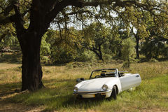 White convertible car Royalty Free Stock Photo