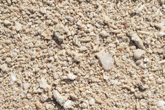 White coral beach background. Coral sand texture on seaside under tropical sun. Stock Images