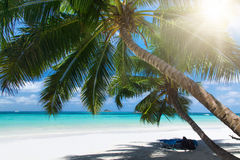 White coral beach sand and azure indian ocean. Stock Photo