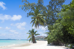 White coral beach sand and azure ocean. Seychelles islands. Royalty Free Stock Photography