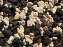 White Coral Black Lava Rock. Close-up of tumbled white coral and black volcanic lava rock pebbles found on an  beach off of the Hoapili Trail on Maui Stock Photography