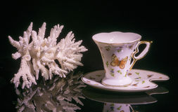 White Coral and coffee cup Royalty Free Stock Photo