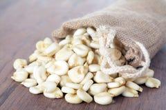 White corn Stock Photos