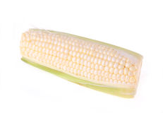 White corn isolated on white Stock Photo
