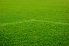 White corner line goal on grass soccer field Royalty Free Stock Photo