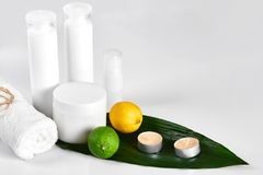 White cosmetic products and green leaf on white background. Natural beauty products for branding mock-up concept. Still life. Copy space stock photo
