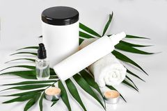 White cosmetic products and green leaf on white background. Natural beauty products for branding mock-up concept. Still life. Copy space royalty free stock photo