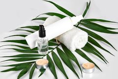 White cosmetic products and green leaf on white background. Natural beauty products for branding mock-up concept. Still life. Copy space royalty free stock images