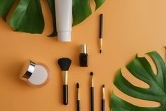 White cosmetic products and green leaves on color background. Royalty Free Stock Photos