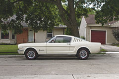 White Coupe on Concrete Road Near Green Leafed Tre Stock Photography