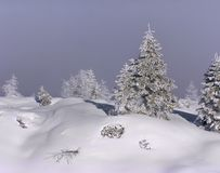 White cover. A white cover of snow Royalty Free Stock Image