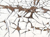White cracked paint. Royalty Free Stock Photo