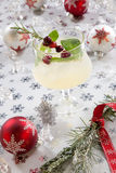 White Cranberry Spritzer Royalty Free Stock Image