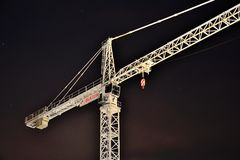 White crane at night Stock Photo