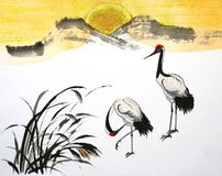 White cranes Royalty Free Stock Image