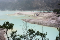 White Crater in Bandung, Indonesia. Kawah Putih (white crater) situated in South of Bandung, Indonesia. The color of the water is apple green because it contains Royalty Free Stock Photos