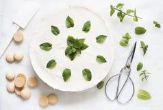 White cream cheese cake Royalty Free Stock Photos