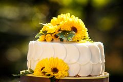 White creamy delicious cake Stock Images