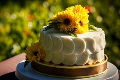 White creamy delicious cake Royalty Free Stock Images