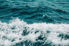White crest of a sea wave. Selective focus. Shallow depth of fie. Ld. Toned Stock Photography