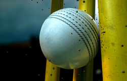 White Cricket Ball And Wickets Royalty Free Stock Image