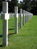 White cross. With a flower in American cemetery Omaha Beach, Normandy Stock Images