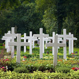 White crosses. White, blank wooden crosses in a cemetery Stock Image