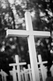 White crosses at the military  cemetery. Stock Photography