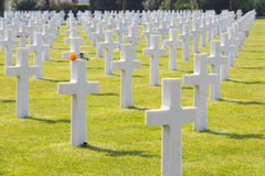 White Crosses of the World War II Normandy American Cemetery and Memorial Stock Photo