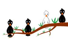 White crow. The illustration dedicated to the  white crow Stock Photo