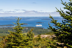 White Cruise Ship Beyond Fir Trees Stock Photo