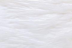 White crumpled plastic texture background Stock Photos