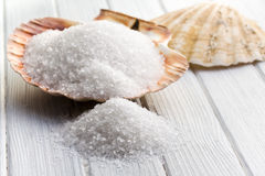 White crystal salt in seashell Royalty Free Stock Images