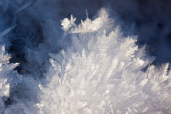 White crystals Stock Photography