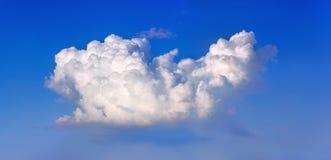White cumulus cloud. On a blue sky stock photo