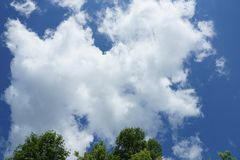 White Cumulus clouds on a blue sky background crown of green tre. White Cumulus clouds on a blue sky background, fluffy, fancy shape crown of green trees stock photography