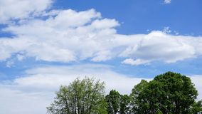 White cumulus clouds in blue sky. Spring time stock image