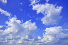 White Cumulus Clouds In The Sky. White cumulus clouds in the blue sky royalty free stock images