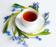 White cup with black tea surrounded with tender squill blue flowers Royalty Free Stock Photography