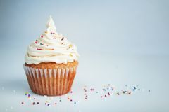 White cup cake Royalty Free Stock Image