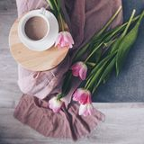 White cup of cocoa, pink tulips on a gray sofa, top view stock photography