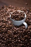 White cup with coffee beans Royalty Free Stock Image