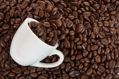 White cup with coffee beans. White cup with space for logo or text with coffee beans Stock Images