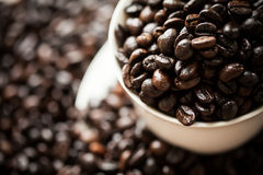 White cup on the coffee beans Royalty Free Stock Photos