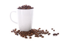 White cup and coffee beans. On white background Royalty Free Stock Photos