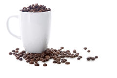 White cup and coffee beans. On white background Stock Photography