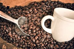 White cup and coffee beans. Vintage style Royalty Free Stock Photos