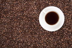 White cup with coffee on coffee beans. White cup with coffee on heap of coffee beans from top Stock Photos