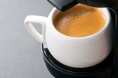 White cup of coffee in the coffee machine, close-up Stock Image